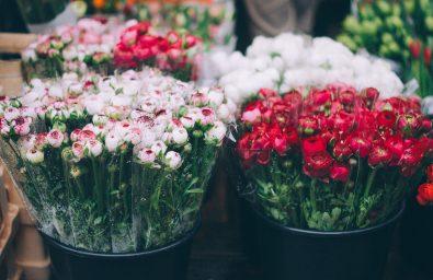 6-2-florarie